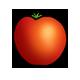 Bio-Tomate-1